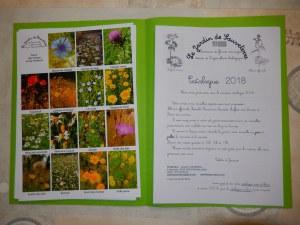catalogue couleur 2019